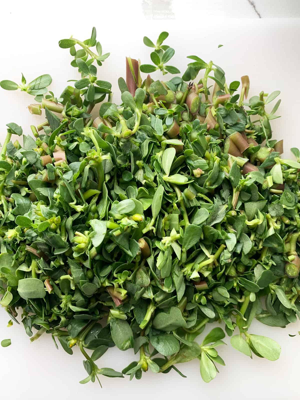 Purslane recipe - Roughly chopped purslane/bakleh freshly picked from the garden