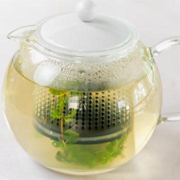homemade fresh herbal tea in a pot