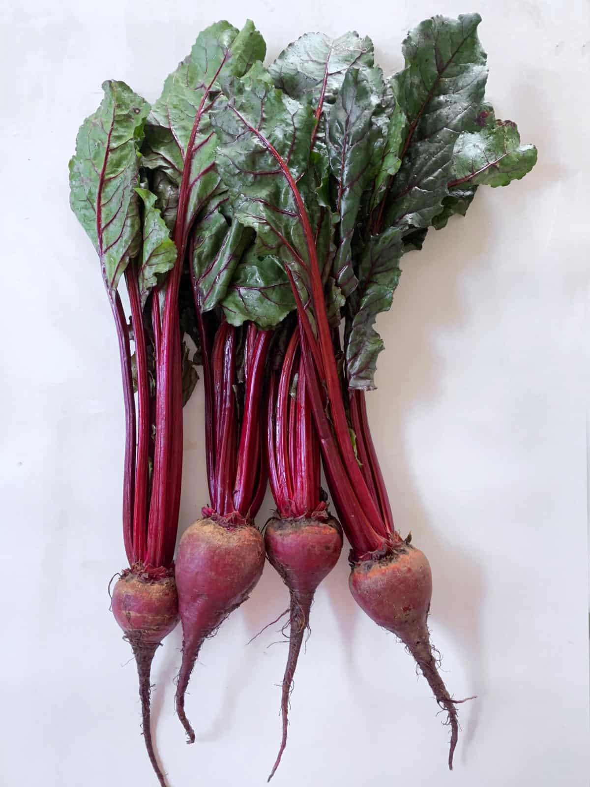 four fresh beetroots with leaves laid down on a white background